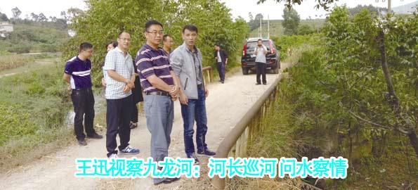 王迅视察九龙河:河长巡河 问水察情